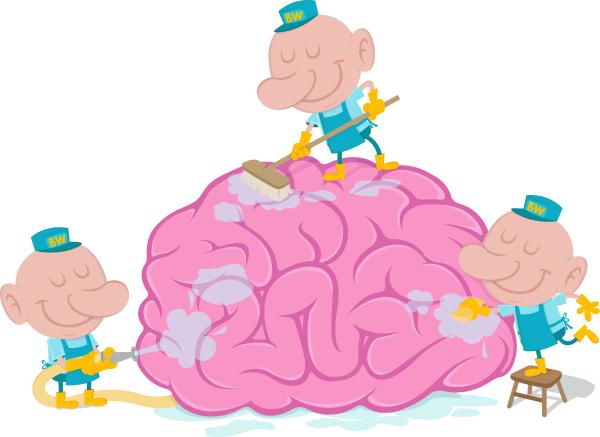 blog sleep cleans the brain